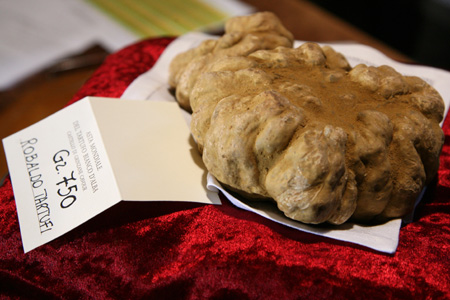 truffle $210,000 White Truffle: Worlds Most Expensive Ever?