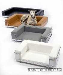 Luxurious Sofa for your Dog