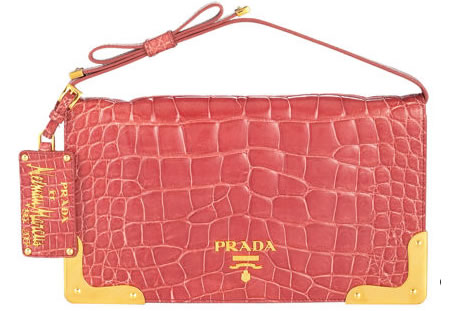 http://elitechoice.org/wp-content/uploads/2007/09/prada_clutch.jpg