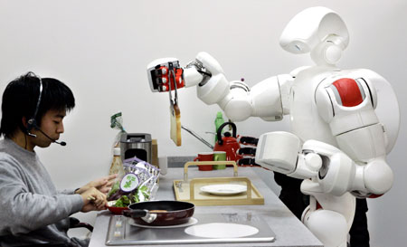 Twendy-One: A Humanoid Robot or Housework Robot?