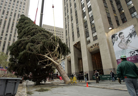 Rockefeller Plaza Installs 84-foot-tall Christmas tree And Bejeweled Star