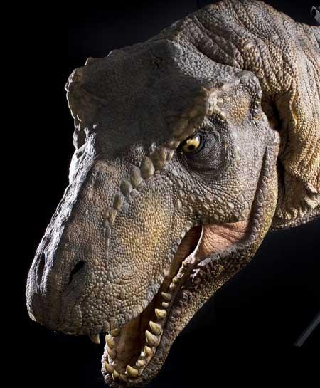 Jurassic Park Tyrannosaurus Rex to Fetch $80,000