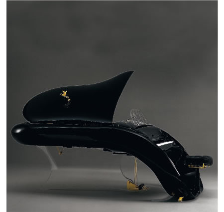Schimmel's K 208 Pegasus Oval Piano: Elite, Elegant and Exotic