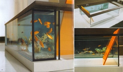 Moody Acquario: Aquarium Bathing With Fishes, Not Sharks!