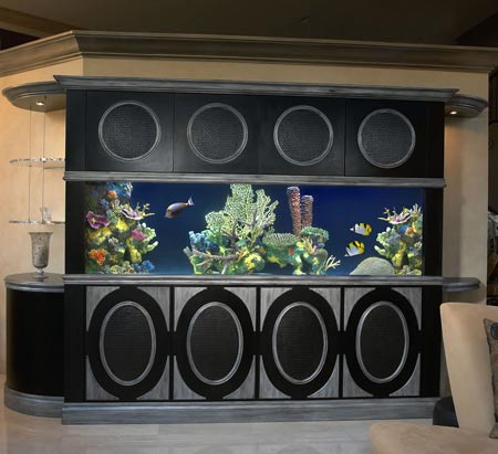 aquarium studio Customized Aquariums