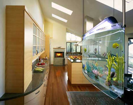 asp aquarium Spacearium: A Contemporary Aquarium