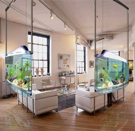 Spacearium: A Contemporary Aquarium
