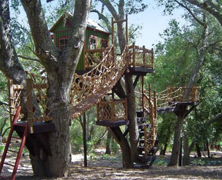 Luxurious Tree Houses