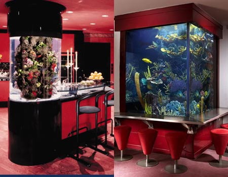 Customized Aquariums