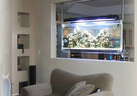 Spacearium a contemporary aquarium - Fish tank partition wall ...