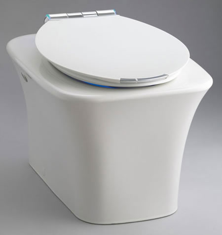Kohler Hi-Tech Fountain Toilet