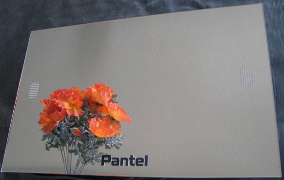 Pantel Unveils Trio of Weatherproof Mirror TVs