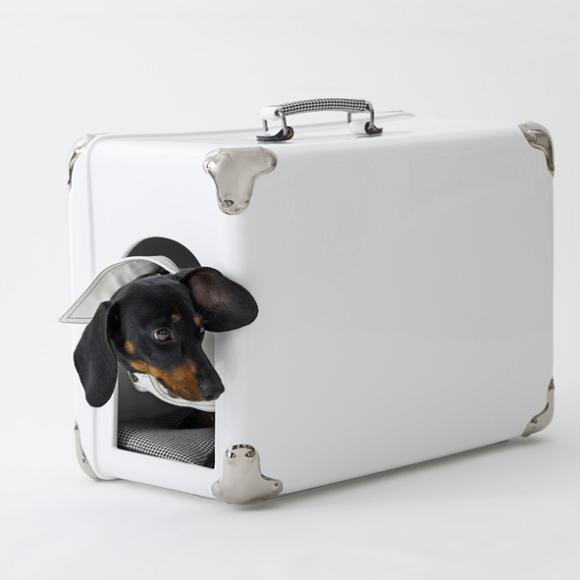 dog-case