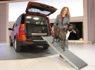 honda_element_dog_concept