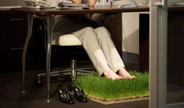 office-grass-patch