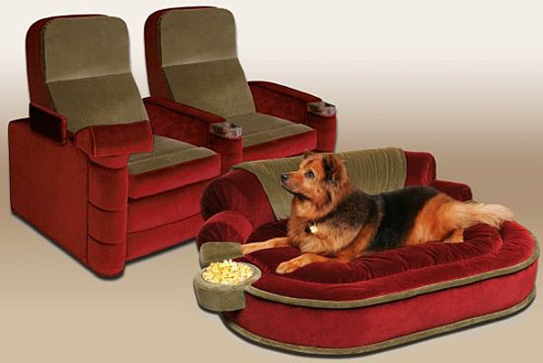 Pet Cinema Lounge