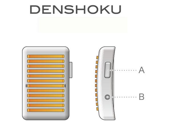 denshoku_1