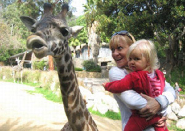 LA-Zoo