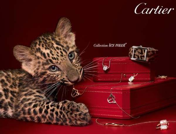 Cartier-les-must-Cheetah-watch1