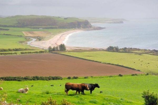 Mull of Kintyre in Argyll