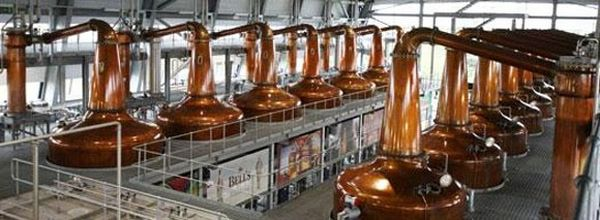 roseisle diageo distillery