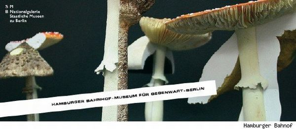 Museum for Contemporary Art berlin mushroom bed