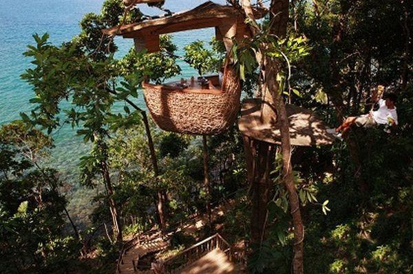 Treepod-Dining