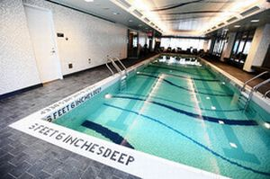 Pool at Mima1 New Rental Tower in Manhattan Expects People to Pay Top Price for Amenities like Dog Spa