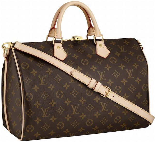 LV Monogram Speedy