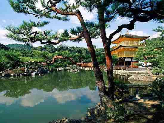 golden-temple-kyoto_gucci