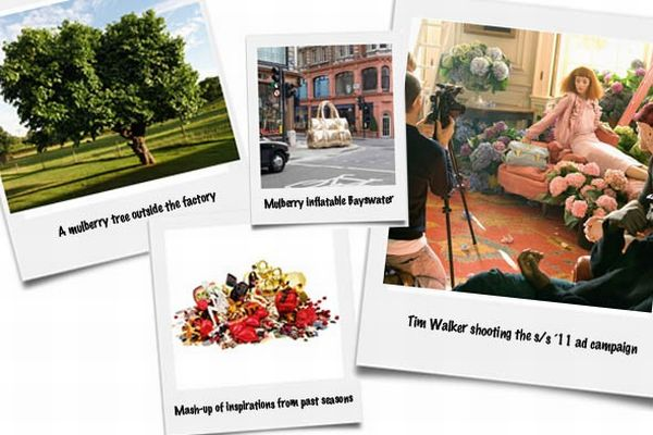 mulberry-images