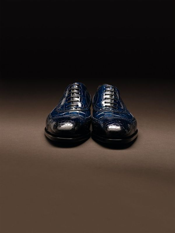 Special Edition Ferragamo Shoes