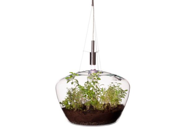 glasshouse03 A Mini Greenhouse Lamp allows you to Grow Fresh Herbs in an Urban Kitchen
