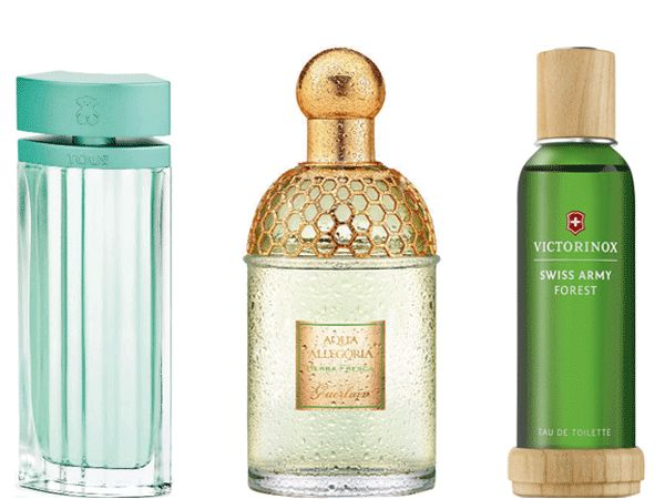 earthy_scents_fragrances_for_this_season