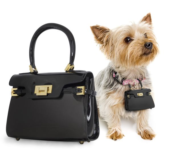 Pawbag is an Exact Replica of the Luxury Handbag