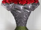 Celebrate Valentines Day with Worlds Most Expensive Roses